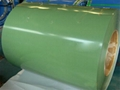 prepainted galvanized steel coils, green color
