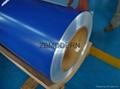 Color prepainted galvanised steel coil