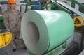 China ppgi steel coils