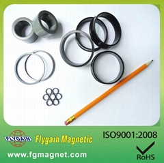 Injection Bonded ndfeb magnet