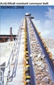 Acid/Alkali Resistant Conveyor Belt 3