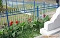 优质环保锌钢护栏围栏 3