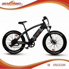 patented frame fat tire powerful motor in frame battery electric bicycle