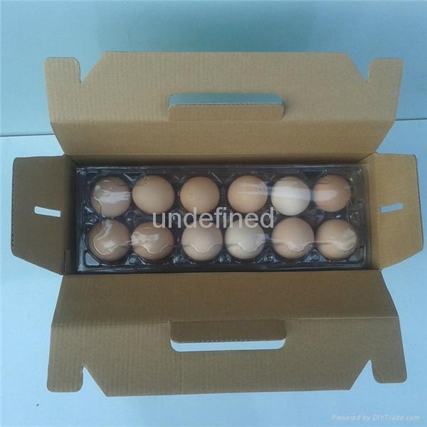 FEFCO 0217 Folding Corrugated Carry Box for Fruits & Eggs  2