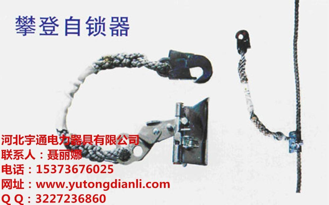 銅陵安全繩自鎖器 4