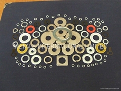 Washer,Gaskets-ASTM F436,ASTM F959,DIN6916,BS4395,AS1252