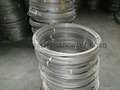 Stainless Steel Coiled Tube-ASTM A269 TP304/TP304L,TP316/TP316L
