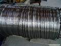 Seamless Stainless Steel Tube in Coils-ASTM A269 TP304/TP304L,TP316/TP316L