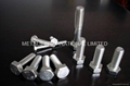 ASTM A193,AST F593,DIN931,DIN 934 Stainless Bolts,Nuts,Threaded Rods,Studbolts 1