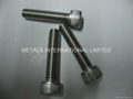 ASTM A193,AST F593,DIN931,DIN 934 Stainless Bolts,Nuts,Threaded Rods,Studbolts 10