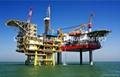 API 2H海上結構鋼板
