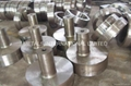 ASTM A105,A181,A182,A266,A288,A289,A290,A291 Forgings,Forging Products