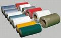 A1050, 1060, 1100, 3003, 3005, 3105, 5005, 5052, 6061, 8011 Coated Aluminium Coils