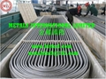 ASTM A688,ASTM A213,ASTM A249,DIN 28179 Stainless Steel  U-Tube,U-bent tube