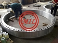 ASME B16.5/DIN2527/ASTM A105/ASTM A182 (NPS1/2-NPS24)  FLANGE