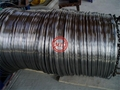 ASTM A269 TP304/TP304L,TP316/TP316L Stainless Steel Coil Tube