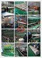 ASTM B68,ASTM B75,ASTM B88,ASTM B111,ASTM A280,AS 1571,AS1572-Copper Tube