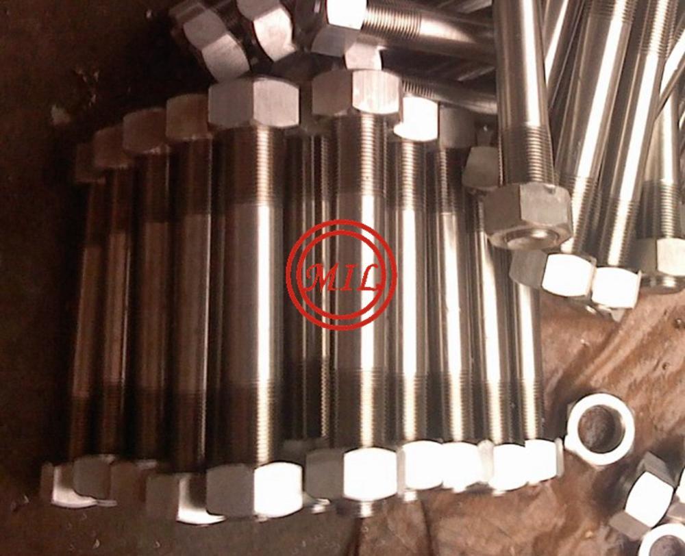 904L-1.4529 Hexagonal Nuts