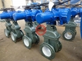Large_foot_valve_with_SS_strainer