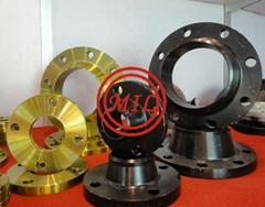 ASTM A105 EPOXY COATED/GALVANIZED/NYLON/TEFLON FLANGE