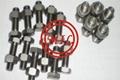 镍基合金螺丝、螺母、螺钉
