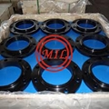 ASTM A105 EPOXY COATED/GALVANIZED/NYLON/TEFLON FLANGE