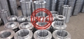 ASTM A182 STAINLESS STEEL FALNGES