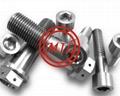 Titanium Bolts, Titanium Nuts, Titanium Washers, Titanium Fasteners etc 3