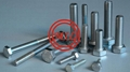 ASTM A193,ASTM F593,DIN931,DIN 934 Stainless Bolts,Nuts,Threaded Rods,Studbolts