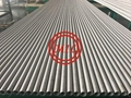 UNS S31603 | WNR 1.4404 | 316 | WNR 1.4404 | 316L Stainless Steel Pipes & Tubes