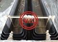 ASME SA556 B2 Cold Drawn Carbon Steel Seamless Feedwater Heater U Tubes