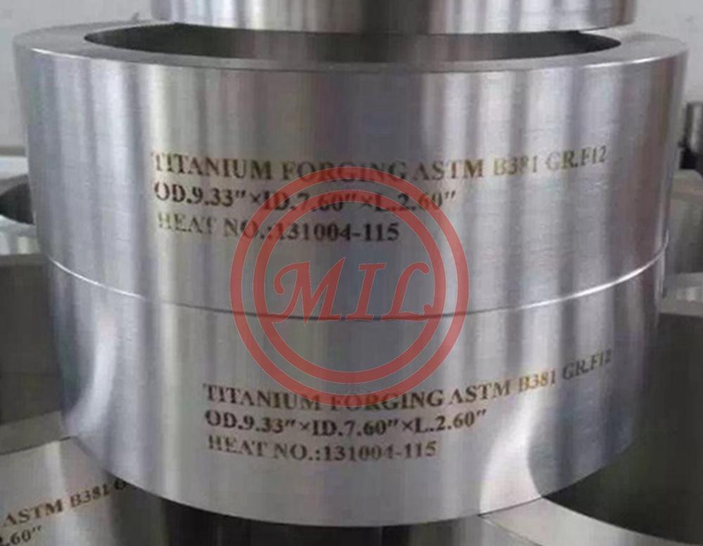 Titanium Forged Ring