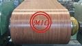 SGCC PPGI Prepainted Galvanized Steel Coil