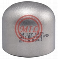 ASTM A403 WP304 Stainless_Steel cap