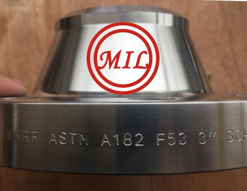 ASTM A182 F53 UNS S32750 B16.5 Super Duplex Ss Flange