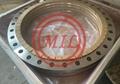 EN 1092-1,ISO 15590-3, JIS B2220,EN 10222-2/4 STEEL FLANGES