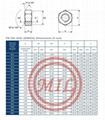 DIN 934 (ISO 4032) NUT