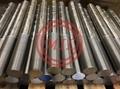 Steel Anchor Rod
