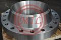 EN 1092-1,ISO 15590-3, JIS B2220,EN 10222-2/4, BS4504(ISO 7005-1) STEEL FLANGES