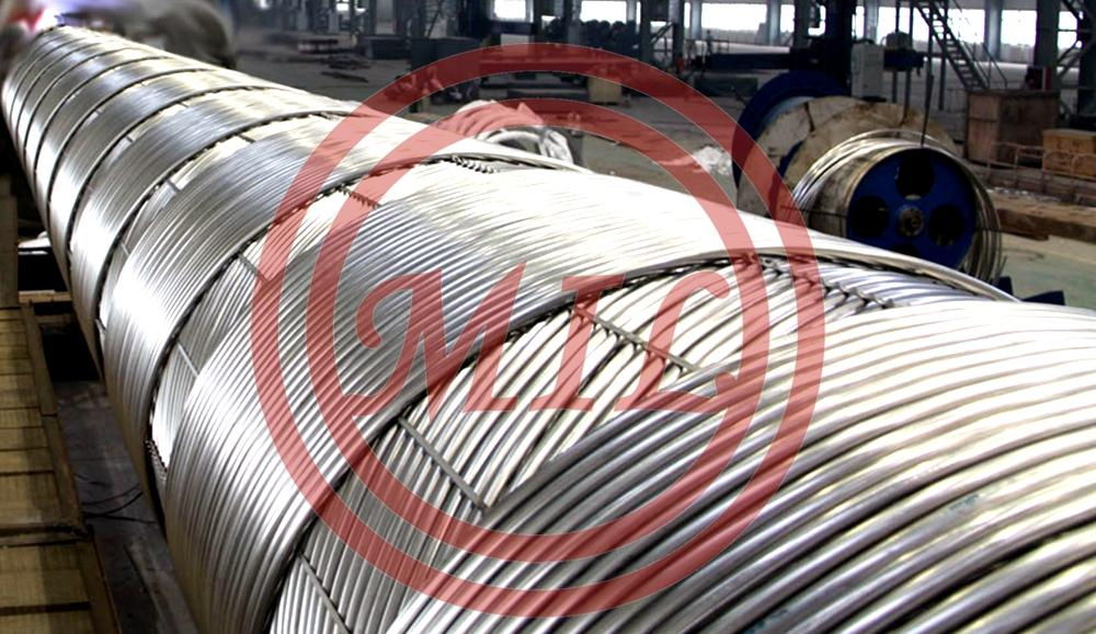 SS 317L Coiled Tubes