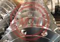 Grooved 150psi Sch10s Astm A182 Gr F51 Welding Neck Flange