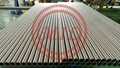 1.4307 Polished Welded Stainless Steel Tube EN10357 104 X 2.0MM For Dairy