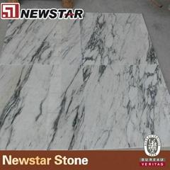 NMJ047 - Arabescato corchia Marble