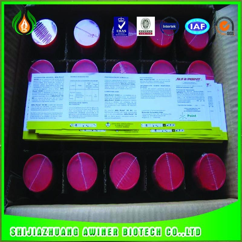 china chemical pesticide 50%SC carbendazim fungicide 5
