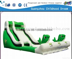 (HD-9402)NEW!Big Fish Inflatable Toy giant inflatable slide