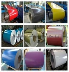 prepanited steel coil