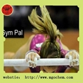 Gymnastics chalk ball  4