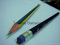 彩色鉛筆 1
