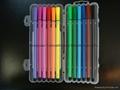 water color pencil 3