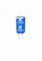 super capacitor 2.7V 10F 2